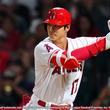 米国MLB ロサンゼルス・エンゼルス大谷翔平選手の少年向け野球用具レプリカモデルを限定発売