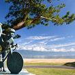 琵琶湖マリオットホテル 宿泊プラン「Biwako Wellness ~Winter Pottering~」を発売 サイクルガイド同行ツアーで冬の琵琶湖の魅力を発見!