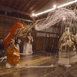 アルファコード、京都の能楽堂で公演された「土蜘蛛」を撮影したソフトバンクの5G(第5世代移動通信システム)実験用VRコンテンツを製作