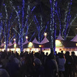 クリスマスを盛り上げる!埼玉県さいたま市でイルミイベント開催中