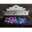 夜の大阪城公園  「サクヤルミナ」15日オープン
