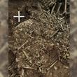 4900年前の人骨からペスト菌を発見…新石器時代から青銅器時代へのミッシングリンクを埋める