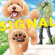 犬と人との絆をつなぐ、ドッグトレーナーの成長ドラマ「DOG SIGNAL」1巻