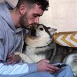 「もっと私を見てよ!」飼い主さんがスマホをいじると嫉妬するハスキー犬が可愛いと話題に!「こんな犬見たことない!」の声