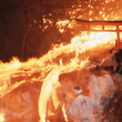 熊野に春を呼ぶ火祭り!和歌山県・神倉神社で「御燈祭り」開催