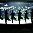 海の中の水族館ヨガ~水の揺らぎや海の香りに包まれながら夜のリラックスタイム~【2月13日(水)・3月13日(水)夜開催】