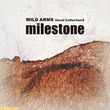 『ワイルドアームズ』のヴォーカル曲がここに! 『milestone〜ワイルドアームズ・ヴォーカルコレクション2』が本日(2月6日)発売