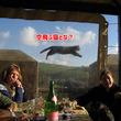 ヘッドレスヒューマン?鳥人間?何が起きている?絶妙なタイミングで撮影された11枚の面白写真