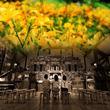 六甲オルゴールミュージアム 特集コンサート「花々とオルゴール~KOBE香水物語に包まれて~」オルゴールと六甲山を表現した香水と花々とのコラボレーション
