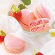 【限定商品】ピンク色にときめくマカロン、カプチーノ風味のクッキーなど。ホワイトデーにぴったりの限定スイーツを2月18日販売開始(直営店は本日より販売)!!