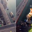 猫ちゃん逃げて~!と思ったらくつろいでた。超絶高所で下界を見下ろす猫(高所恐怖症注意)