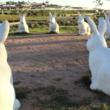 ストーンヘンジならぬバニーヘンジ。ウサギの像が輪になって並ぶアメリカの珍名所だが住民たちは激怒。その理由は?
