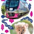 京王電鉄と多摩動物公園の初となるコラボグッズを3月1日(金)から発売します!