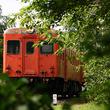 いすみ鉄道、平日1往復増発_国鉄気動車運用は1往復削減