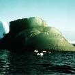 なぜエメラルドグリーン?南極にある緑色の氷山の謎(米研究)