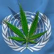 国連システム事務局長調整委員会(CEB)が「薬物政策に関する国連システムの共通の立場」で満場一致で支持した声明文の和訳資料を公表。
