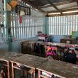 チェンマイ山岳地域の新校舎建設を支援ー在チェンマイ日本総領事館