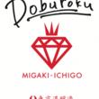 """""""食べる宝石""""×""""飲む点滴""""!? 日本のイチゴとお米が醸し出す芳醇な味わいのお酒 「ミガキイチゴどぶろく」3月23日発売"""
