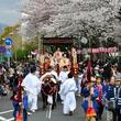 家康の花見を再現!静岡県静岡市で「第63回静岡まつり」開催
