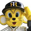 【ぶち破れ!オレがヤル】阪神タイガースの球団マスコット・トラッキーが、約40センチの大迫力オブジェとなって販売中!