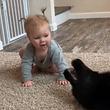 これが人たらしの必殺技、赤子もあやす、犬のスライディングキッスだ!