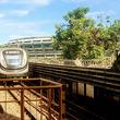 【norijiの鉄視点 017】リオのカーニバル 2019 優勝チーム「1番目の駅」マンゲイラと鉄道の意外な接点