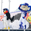 ヤクルトつば九郎&中日ドアラが25周年スペシャルイベント