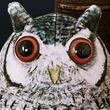 本物そっくり!もっちりと手触り抜群な「フクロウポーチ」が販売中!アフリカオオコノハズク、コキンメフクロウなど全3デザイン