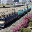 横浜港を通る貨物線「高島線」に乗る ピカピカの新車両が機関車にひかれて走ることも