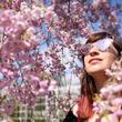 アメリカ最古の日本庭園 桜の季節迎える=ニューヨーク
