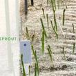 SenSprout、遠隔で灌水予約・管理ができる「灌水制御システム」の有用性が認められ大川市が導入を促進