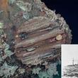 【映像】昭和18年に撃沈された旧日本軍の軽巡洋艦「神通」が発見される!