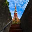 東京タワーを撮るなら?おすすめの「映える」撮影スポット13選