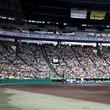 今年は約1,450組の応募。当選した200組が阪神戦を甲子園で一緒に観戦します。