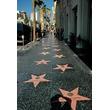女優ルーシー・リューがハリウッド殿堂入り、代理母出産の3歳息子も注目の的に