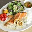 H.Q CAFE(HEAD QUARTERS CAFE)成城店がグランドメニューをリニューアル!人気のプレートメニューに魚料理が加わるなど、バリエーション豊かにパワーアップ。