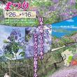 ジャカランダの花が咲き誇る!宮崎県日南市で「ジャカランダまつり2019」開催