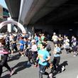 スタートは高校球児の聖地・甲子園球場 「にしのみや甲子園ハーフマラソン」11月3日開催 参加者募集