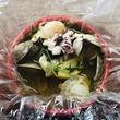 魚介が食べられるヘルシーな鉄板焼き!  カジュアルでリーズナブル 仕事帰りのおひとりさま女性にも  令和最初の新業態『グリル魚がしバル』5月14日東京・新橋にオープン