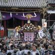 5月18日(土)、5月19日(日)の2日間浅草神社例大祭「三社祭」をJ:COMが生中継5月19日(日)18時からはゲスト解説に「いとうせいこう氏」が出演