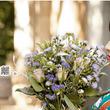 振袖レンタルショップ「ジョイフル恵利」が、貸衣しょう業におけるリサーチで3部門No.1を獲得!!(日本マーケティングリサーチ機構調べ)