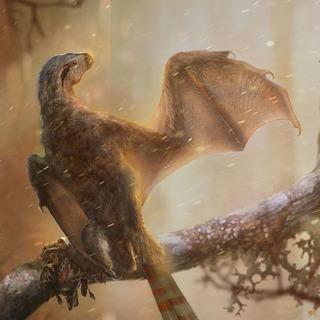 コウモリっぽい新種の恐竜の化石が中国で発見さ…