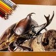 「生きてるみたい」「4K画像よりきれい」 色鉛筆で描いたカブトムシが今にも動き出しそうな完成度