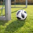 FIFA、W杯の参加国拡大を見送る…カタール大会は現行通り32カ国で開催が決定
