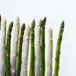 【ウェスティン ルスツリゾート】新鮮採れたて!北海道初夏の食材アスパラガスフェア