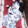 """Mana様ブランド『モワ・メーム・モワティエ』初の""""浴衣""""誕生! この夏は青薔薇で涼やかエレガントに"""