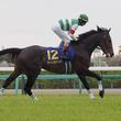 【日本ダービー】枠順と見どころ サートゥルナーリアは3枠6番