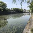 「江戸城の防御力は世界最高レベル」 授業では習わなかった「お城のスゴいところ」を専門家に聞いてきた
