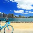 【ハワイの交通ルール】日本人がハワイで自転車利用を戸惑う理由とは?