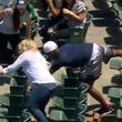 """【MLB】ファウルボールが欲しくて""""必死すぎる""""ファンが話題「爆笑」「胸が張り裂ける」"""